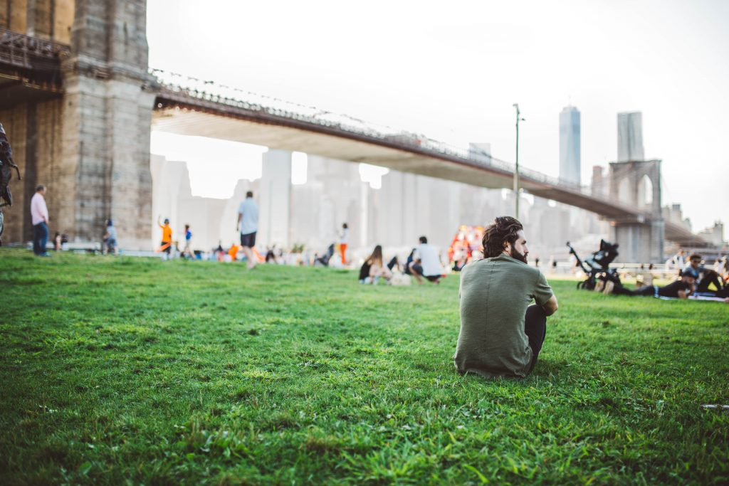 People having a good time on a lawn beneath the Brooklyn Bridge.
