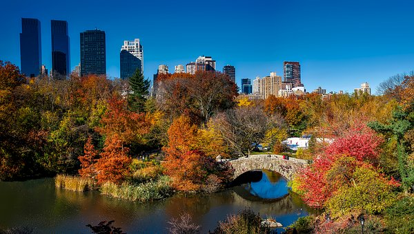 Things you must do in NYC this fall